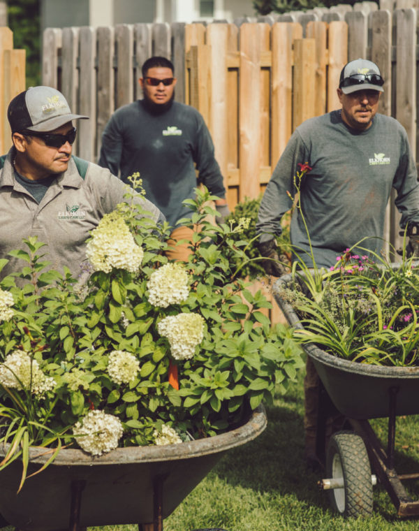 Landscaping Nebraska Service | Elkhorn Lawn Care